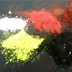 Carp Company Powdered Colour Additives - Carp Barbel Bream Coarse Fishing Bait
