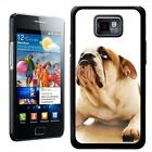 Bull Dog Lying Down Staring Up Hard Case Back Cover For Samsung Galaxy S2 i9100