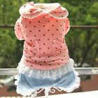 Autumn Winter Pretty Pearl Dog Jean Clothing Coat Dog Jacket Sweater Clothes