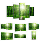 Canvas Picture 30 Shapes Print  sun rays forest summer 2689 UK