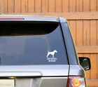 Sticker Dog on Board ''Jack Russell'' adesivo auto Cane a bordo Razza Canina