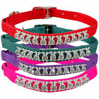 4 colors Studded Diamond Small Dog Cat Bell Collar Designer Pet Collars
