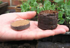 Coir pellets jiffy 7 pots plugs seed sowing 36mm peat free packs of 25 - 850