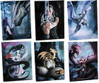 Anne Stokes Dragon Collection Wall Plaque/Canvas Print - Ideal Gift