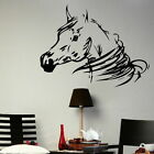 HORSE WALL STICKERS! trailer graphic art decal,  stable door vinyl transfer decor