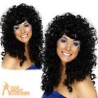 Adult Black Boogie Babe Wig 60s 70s 80s Cher Fancy Dress Costume Ladies Womens