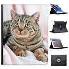 Portrait Of Brown Striped Cat Folio Wallet Leather Case For iPad 2, 3 & 4