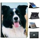 Border Collie Dog Sitting In Field Folio Wallet Leather Case For iPad 2, 3 & 4
