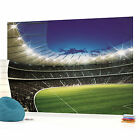 Football Stadium 2 Photo Wallpaper Wall Mural (CN-323VE)
