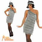 Adul Flapper Costume Silver Ladies 20s Charlston Fancy Dress Gatsby Outfit 8-26