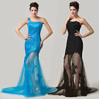 Appliques Long Evening Formal Party Wedding Gown Prom Bridesmaid Dress 6 8 10 ++