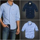 """NWT HOLLISTER MEN`S CLASSIC OXFORD SHIRT """"HERMOSA - FIRST POINT"""" SIZES  M, L, XL"""