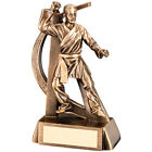 Martial Arts Award  - Free Engraving Male Martial Arts KarateTrophy