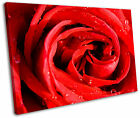 Red Rose Floral Flower Framed Canvas Wall Art Picture Print