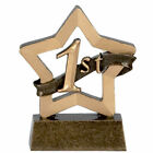1st, 2nd, 3rd Mini Star Plaque, Trophy, School Award Resin  FREE ENGRAVING