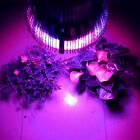 Beautiful LED Plant Grow Light Red + Blue Flower  6W 15W 21W 27W 36W 45W 54W