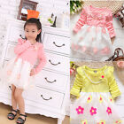 Toddlers Baby Girls Princess Lace Party Dresses Kids tutu Dress clothes