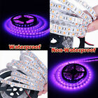 New 5M 5050 SMD 300 LED Waterproof  Non-Waterproof Strip Light DC 12V Purple US