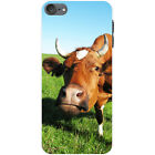 Cow Hard Case For Apple iPod Touch 6th Gen