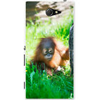 Orangutan Monkey Primates Animal Hard Case For Sony Xperia M2