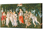 La Primavera Canvas Wall Art Print Botticelli Framed Ready Hang Picture