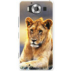 African Lion Big Cat Hard Case For Microsoft Lumia 950