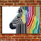 ZEBRA COLOURFUL ABSTRACT FRAMED CANVAS WALL ART BOX PRINT PICTURE S/M/LARGE