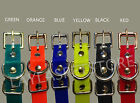 "Внешний вид - PetSafe Stay + Play 3/4""  Roller Buckle Receiver Strap Wireless Collar"
