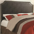 Coaster Upholstered Beds Traditional Novato Upholstered Queen- or Full-Size