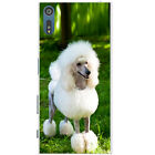 Poodle Caniche Barbone Fluffy Dog Hard Back Case Phone Cover for Sony Xperia XZ