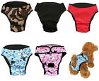 Cute Washable Dog Diaper Female Pet Physical Pant Menstrual Sanitary Nappy