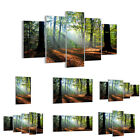 GLASS PRINTS 30 SHAPES Picture Forest Leafs Sun 0136 UK