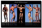 Arnold schwarzenegger Bodybuilder Mr Olympia Strength Home Decor Silk Poster