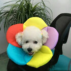 Pet Dog Collar adjustable Ruff Funnel Cover Anti-licking  Bite Neck Protective