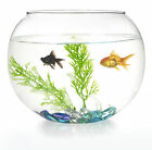 glass goldfish bowls