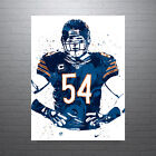 Brian Urlacher Chicago Bears Poster FREE US SHIPPING $15.0 USD on eBay