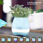 Внешний вид - Music Pot Plant With Wireless Bluetooth Speaker and LED Colorful Night Light