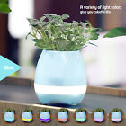 Music Pot Plant With Wireless Bluetooth Speaker and LED Colorful Night Light