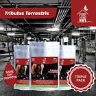 Pure Tribulus Terrestris 500mg-Muscle-Strength-Testosterone Booster-Libido