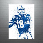 Peyton Manning Indianapolis Colts FREE US SHIPPING $50.0 USD on eBay