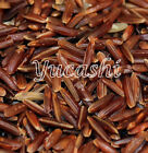 brown parboiled rice - WEHANI RED RICE Aromatic Brown Rice Whole Grain Lundberg 14 oz - 10 lb