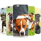 Staffordshire Bull Terrier Staffy Dog Hard Case Phone Cover for Apple Phones