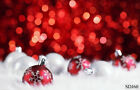 US Fast Ship Christmas Backdrop Vinyl Background 10X10FT 8X8FT 5X7FT Photo Props