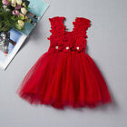 2017 Cute Little Baby Princess Lace Dress Kids Dresses for Girls Mesh Clothing