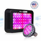 300W 21W LED Grow Light Full Spectrum HydroPonic for Greenhouse Veg Flower Weeds