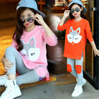 New 1SET/2PCS Spring Kids Young Girls Cute Sweet Fox Sweater W/Pants Candy Color