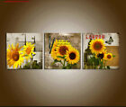 sun flowers paintings canvas buy cheap paintings  1528628937344040 1 Buy SunFlower Oil Paintings on canvas sun flowers oil paintings most popular oil paintings  Oil Painting on canvas