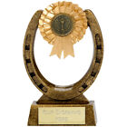 HORSE EQUESTRIAN PONY HORSESHOE TROPHY 3 SIZES AVAILABLE ENGRAVED FREE SHOW