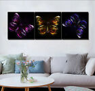 Butterfly in Black Abstract Wall Decal Painting Canvas Print Art Decor Set Frame