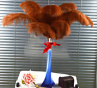 """10Pcs Large Ostrich Feathers Craft Wedding Party Costume Mask Hat Decor 6""""~8"""""""